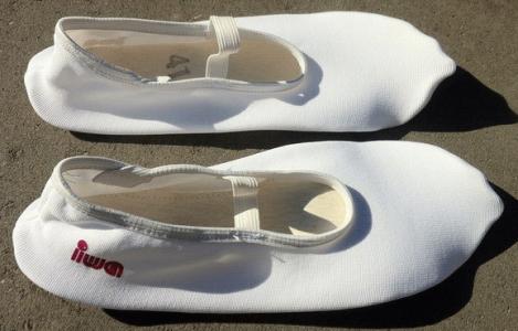 Чешки - обувь для танцев и гимнастики